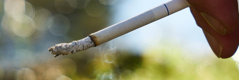 Efectos del tabaco en el medioambiente