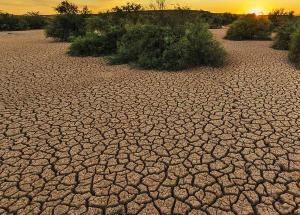 ¿Cuál es el reto más importante al que se enfrenta el medioambiente?